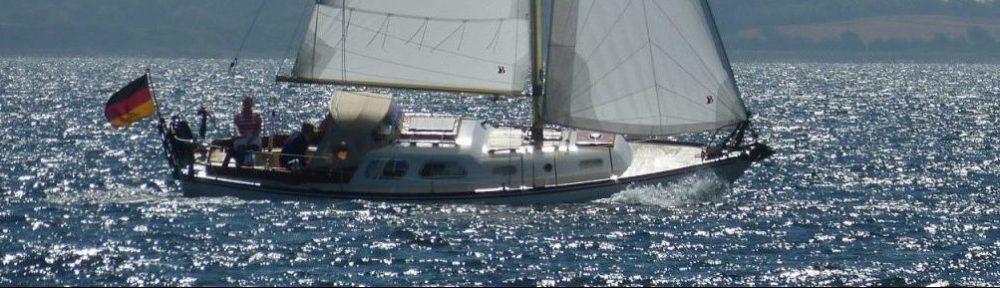 Delphin 66